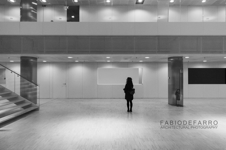 Convention Center - Rome The Cloud - Fuxas Studio - distribution spaces